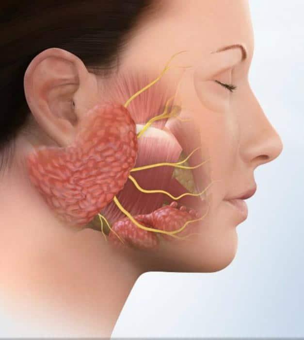 Симптомы воспаления тройничного нерва